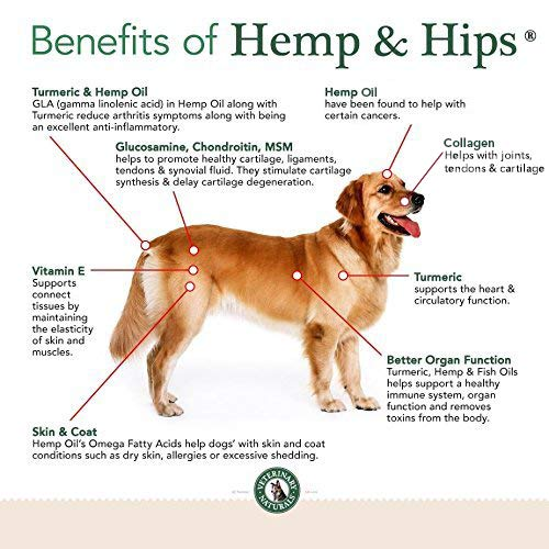 Buy Veterinary Naturals Hemp & Hips Soft Chews Joint