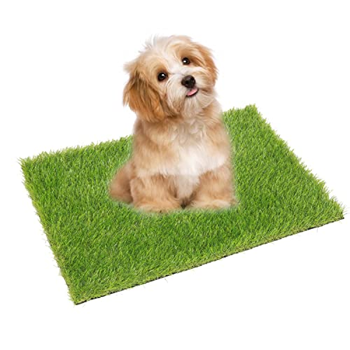Eco Matrix Artificial Grass Dog Training Door Mat Pee Pad Fake Grass Doormat Pet Turf Soft Green Lawn Rug Synthetic Grass Carpet Buy Products Online With Ubuy Philippines In Affordable Prices